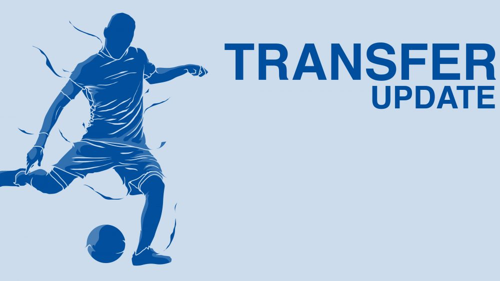transfer-update-beitragsbild-svg